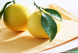 Lemon-Wallpaper-fruit-6334028-1024-768
